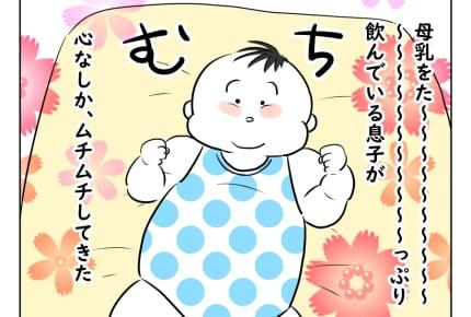 【どすこいママ育児73話】気になる!息子のムチムチ度 #4コマ母道場