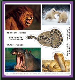 図鑑「危険生物/海外の動物・ヘビなど クイズつき」シール