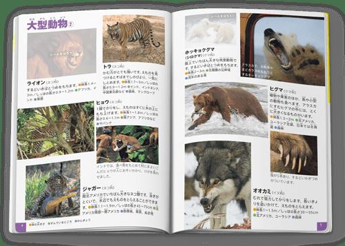 図鑑「危険生物/海外の動物・ヘビなど クイズつき」中