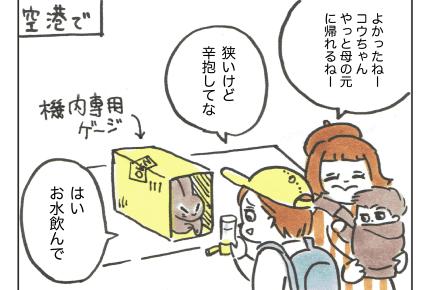 【沖縄でワンオペ38話】上の娘(うさぎ)が反抗期!飛行機大丈夫かしら… #4コマ母道場