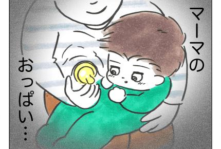 【沖縄でワンオペ37話】双子ママ「入れ替わってみよ!」赤ちゃんは見分けられるのか #4コマ母道場