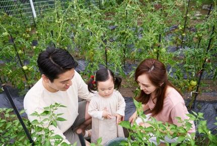 【子どもと一緒に楽しむ家庭菜園02】どこで育てる?親子で安心して楽しむためのオススメの場所とは?