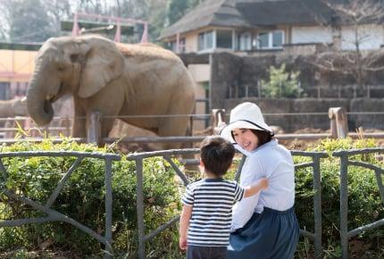 子どものために動物園へ出かけたのにまったく興味なし!これってうちの子だけ?