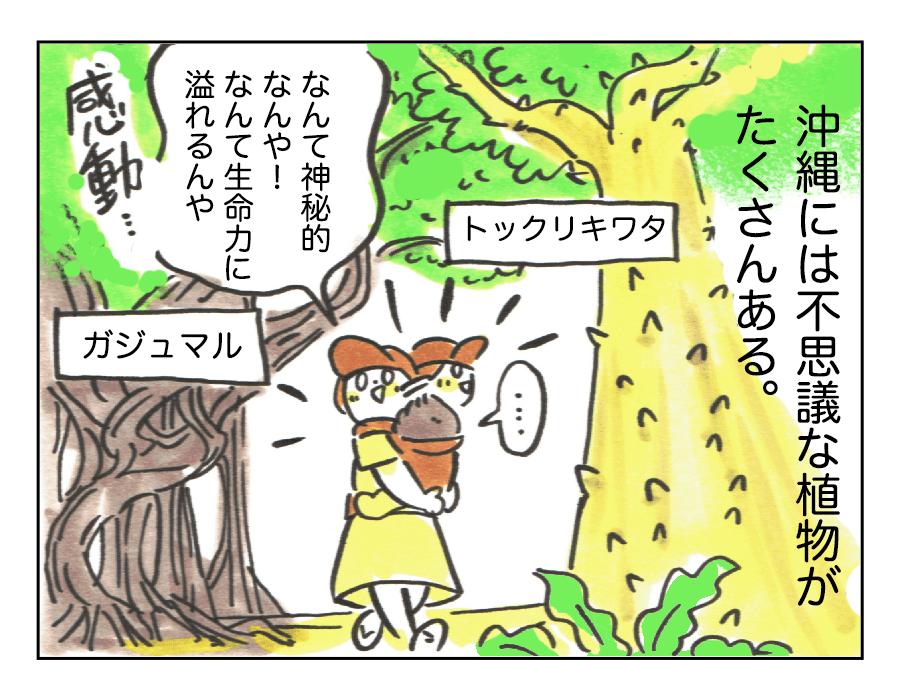 1「沖縄のBeautiful」1
