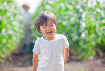 【子どもと一緒に楽しむ家庭菜園06】苗の茎がポキッと折れた!大切に育てた苗、もう諦めるしかない?