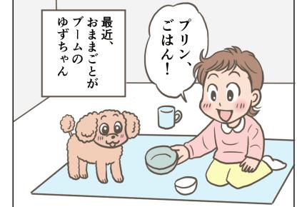 <戸惑いの犬>愛犬とおままごとをする娘「サービスがすぎるのでは……」【娘と愛犬プリンの成長記22話】