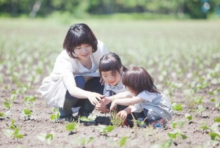 【子どもと一緒に楽しむ家庭菜園08】夏場の雑草取りはどのくらいのペースでしている?