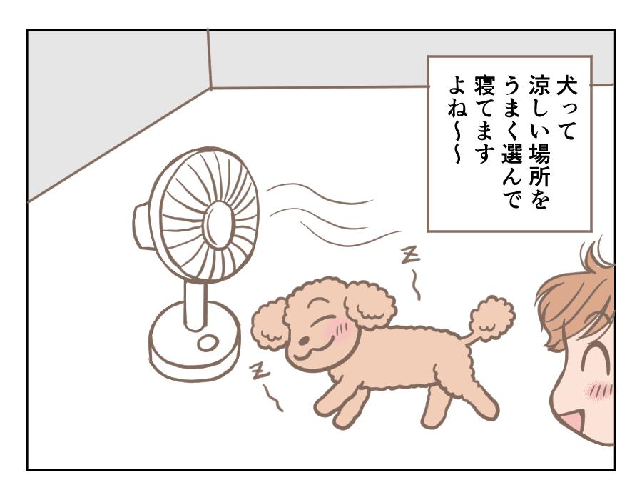 涼しいところ2021-07-01