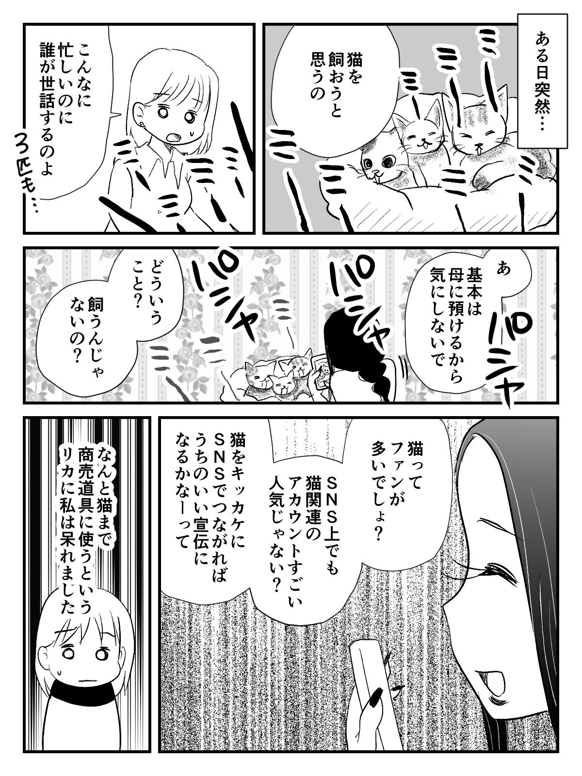 インフルエンサーな_出力_008