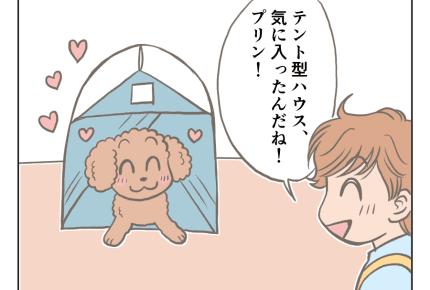 <夏の過ごし方>自宅テントでキャンプ気分【娘と愛犬プリンの成長記】#4コマ母道場