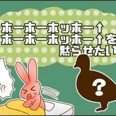 朝から聞こえる「ホーホーホッホー↑ホーホーホッホー↑」という謎の声。正体はいったい!?